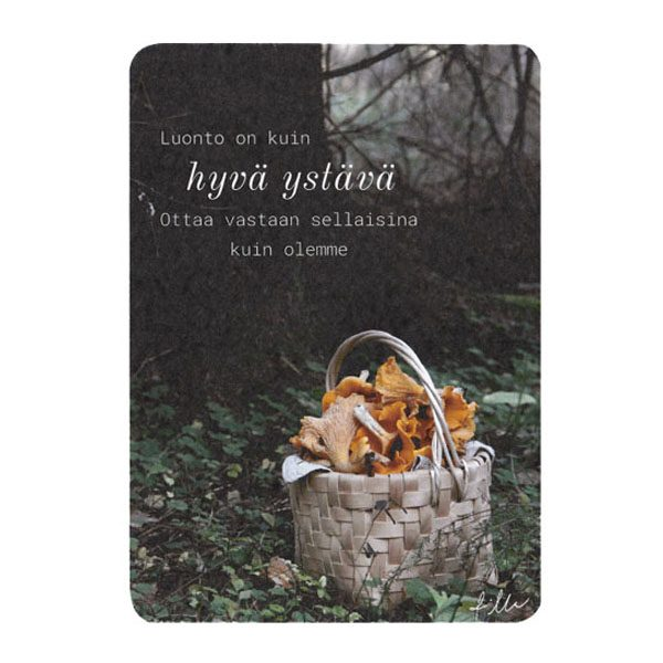 kantarellikori kortti